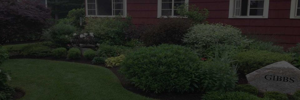 Providing Landscaping 